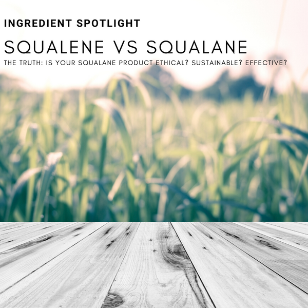 The Truth About Squalane: Is it Ethical? Effective? Sustainable?