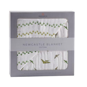 Newcastle Dino Feet and Pteranodon Blanket