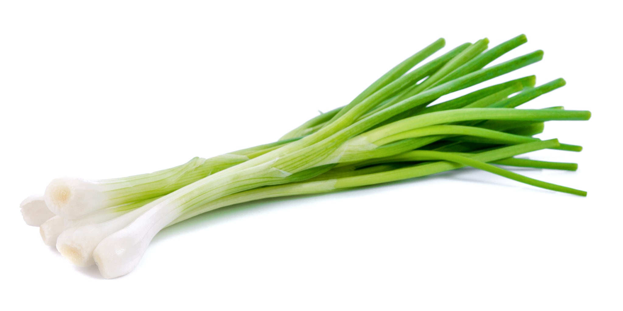 stm>Green Onions, bunch