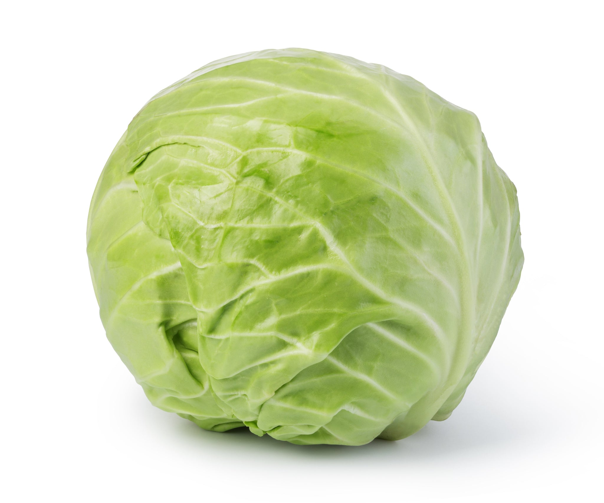 sey>Green Cabbage