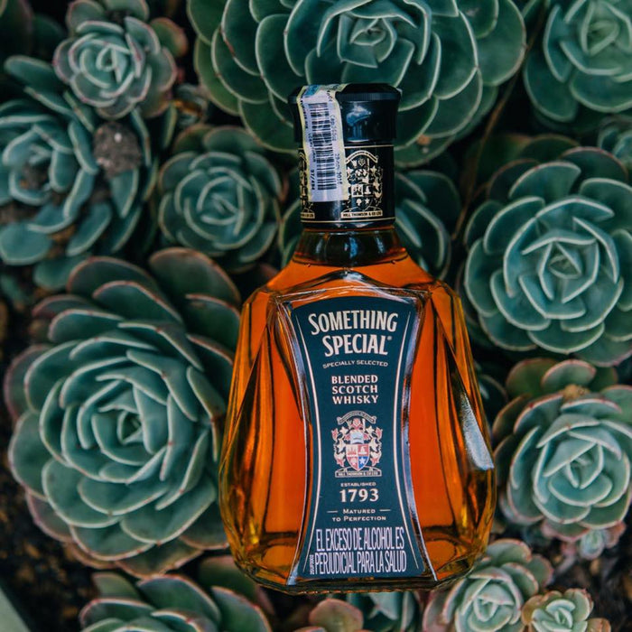 Whisky Something Special - La Careta Licores de la 70