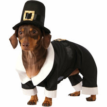 Load image into Gallery viewer, Pilgrim Boy Pet Costume
