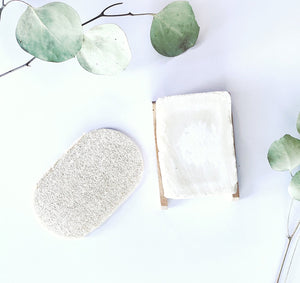 Eco Dish Sponges: Single Layer 3-Pack