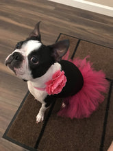 Load image into Gallery viewer, Hot Pink Dog Tutu Skirt | XS-XXXL