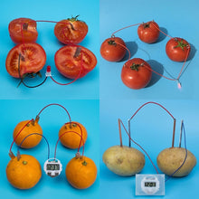 Load image into Gallery viewer, Bio Energy Science Kit Potato Fruit Supply Electricity Experiments Kids Children Student Learining Science Educational Toy