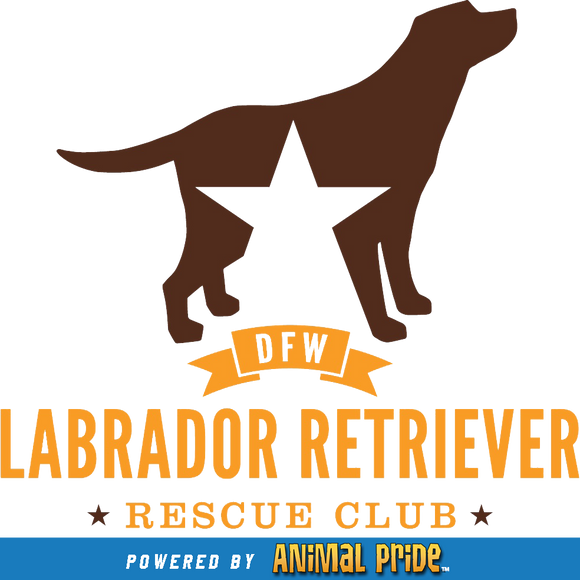 DFW Lab Rescue Club Online Store