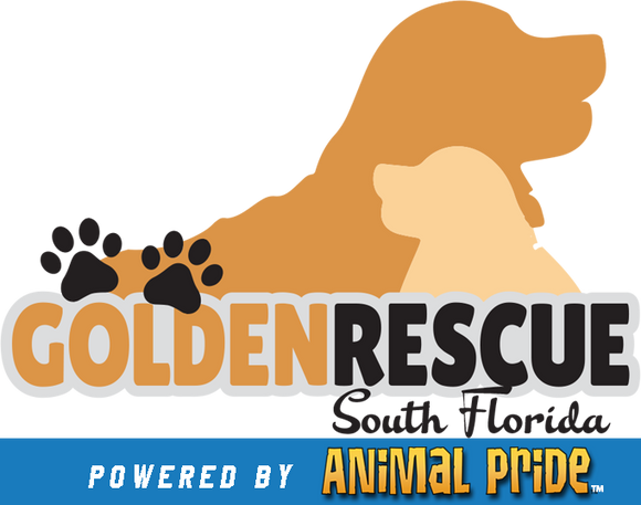 Golden Rescue South Florida