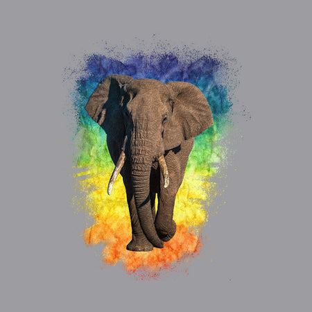 Elephant Rainbow - Adult Adjustable Face Mask