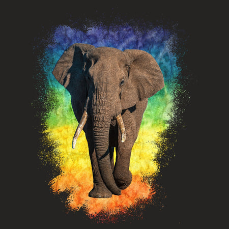 Elephant Rainbow - Adult Tri-Blend T-Shirt