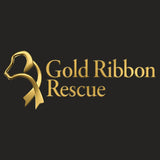 Gold Ribbon Rescue Logo - Women's V-Neck Long Sleeve T-Shirt