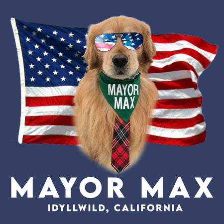 American Mayor Max - Adult Unisex Hoodie Sweatshirt