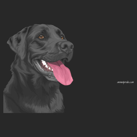 Black Lab Graphic Illustration - Adult Adjustable Face Mask