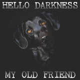 Hello Darkness My Old Friend - Adult Unisex Hoodie Sweatshirt