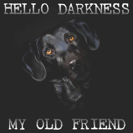 Hello Darkness My Old Friend - Adult Unisex T-Shirt