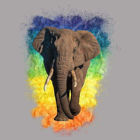 Elephant Rainbow - Women's V-Neck Long Sleeve T-Shirt
