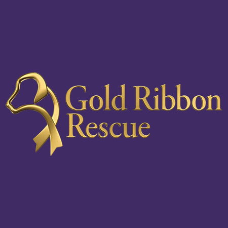 Gold Ribbon Rescue Logo - Women's Fitted T-Shirt