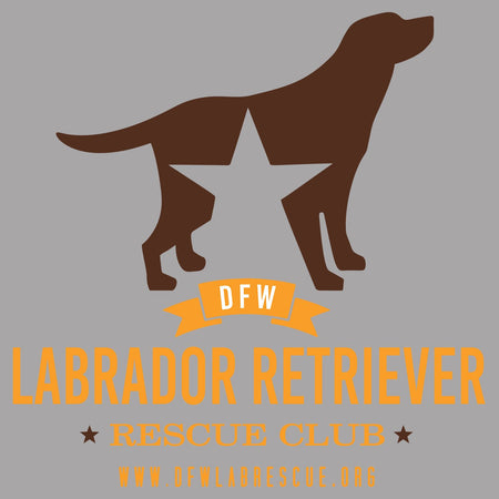 DFW Lab Rescue Logo - Women's V-Neck Long Sleeve T-Shirt
