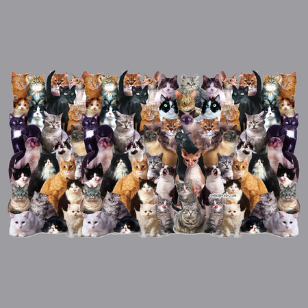 Cat Collage - Adult Adjustable Face Mask