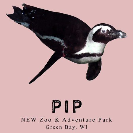 Pip the Penguin - Women's Fitted T-Shirt