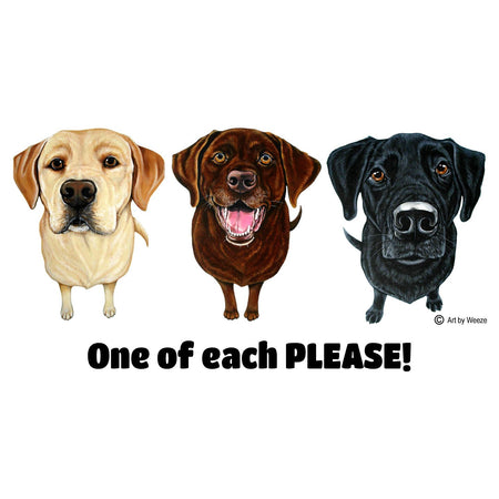 One of Each Labrador Please - Adult Unisex Hoodie Sweatshirt