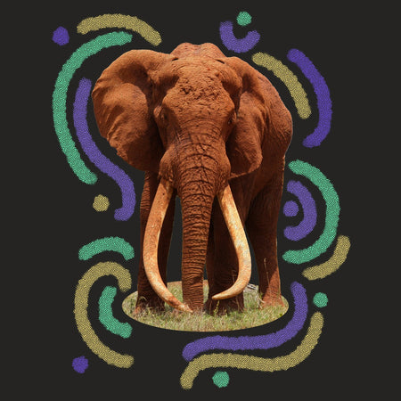 Wiggly Lines Elephant - Adult Tri-Blend T-Shirt