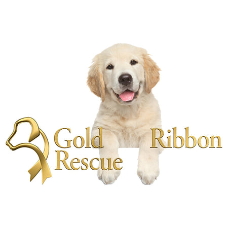 Gold Ribbon Rescue Puppy Logo - Women's V-Neck T-Shirt