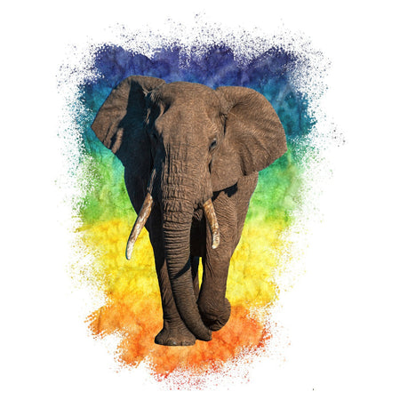Elephant Rainbow - Adult Unisex Long Sleeve T-Shirt