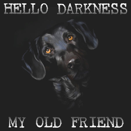 Hello Darkness My Old Friend - Women's Fitted T-Shirt