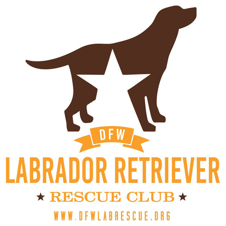 DFW Lab Rescue Logo - Women's V-Neck T-Shirt