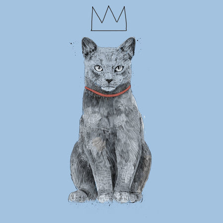 King Of Everything Cat - Women's Fitted T-Shirt