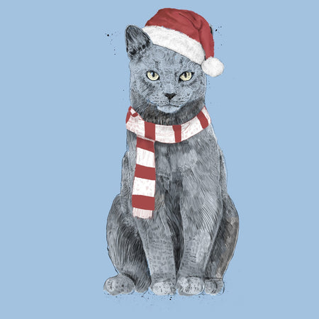 Xmas Cat - Women's Fitted T-Shirt