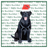 Black Lab Howlidays - Women's Tri-Blend T-Shirt