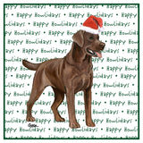 Chocolate Lab Howlidays - Women's Tri-Blend T-Shirt