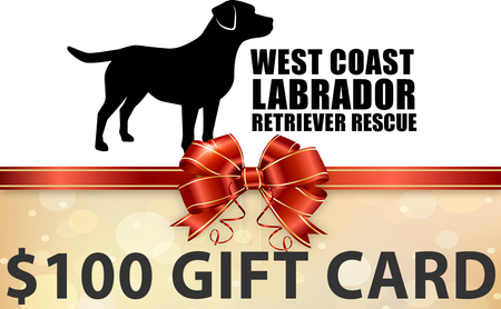 WCLRR Online Gift Card