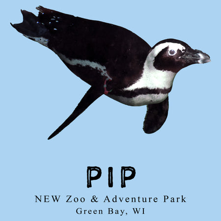 Pip the Penguin - Adult Unisex T-Shirt