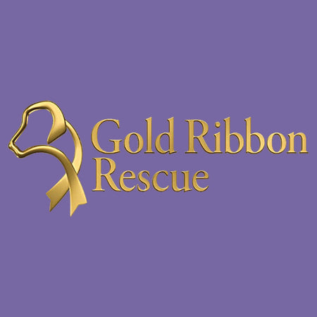 Gold Ribbon Rescue Logo - Women's Tri-Blend T-Shirt