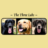 The Three Labs - Adult Unisex T-Shirt