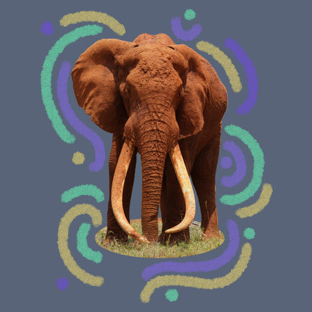 Wiggly Lines Elephant - Women's Tri-Blend T-Shirt