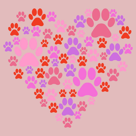 Pink Paw Heart - Women's Fitted T-Shirt