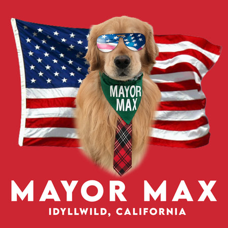 American Mayor Max - Adult Unisex Long Sleeve T-Shirt