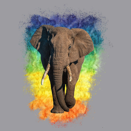 Elephant Rainbow - Adult Unisex T-Shirt
