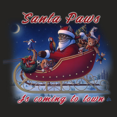Santa Paws is Coming - Women's Tri-Blend T-Shirt