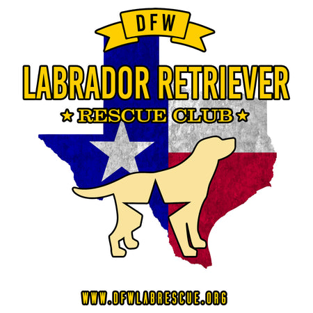 DFW LRRC Texas Flag Yellow Lab Logo - Women's Fitted T-Shirt