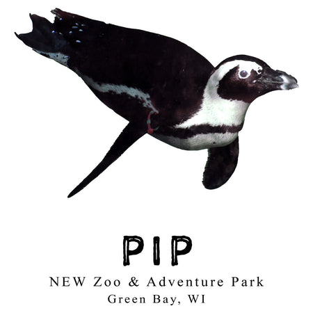 Pip the Penguin - Kids' Unisex T-Shirt