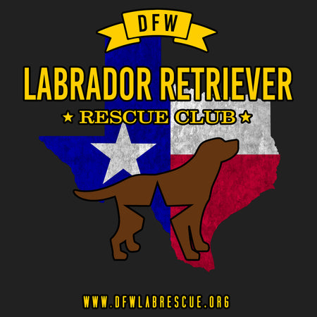 DFW LRRC Texas Flag Chocolate Lab Logo - Women's Fitted T-Shirt