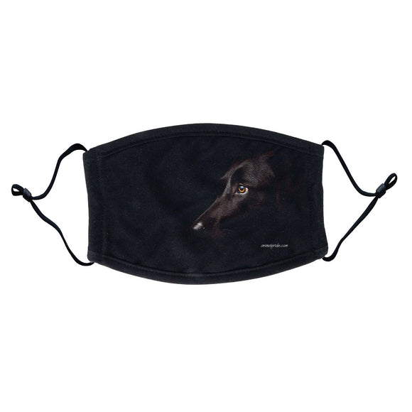 Black Lab Photo Face Mask - WCLRR