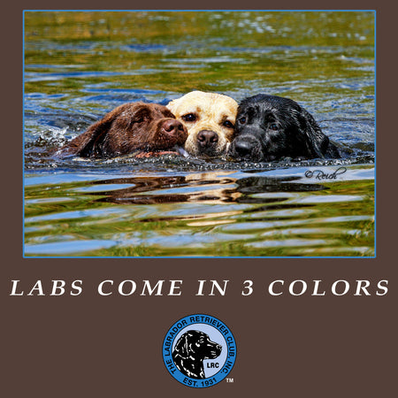 LRC Labs Come in 3 Colors - Adult Unisex T-Shirt