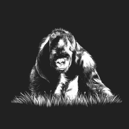 Gorilla on Black - Women's Fitted T-Shirt
