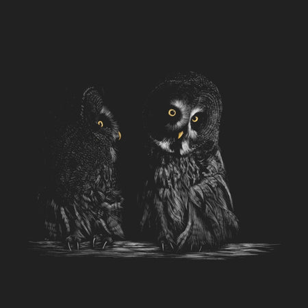 Great Grey Owls on Black - Adult Unisex T-Shirt