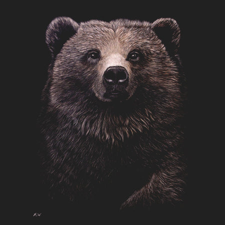 Grizzly Bear on Black - Adult Unisex T-Shirt